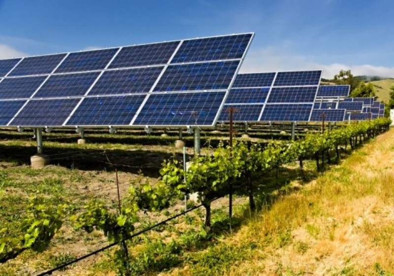 solar-panels-agriculture-560×393